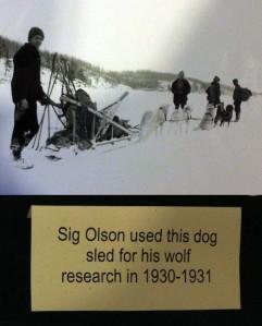 Sig Olson 2