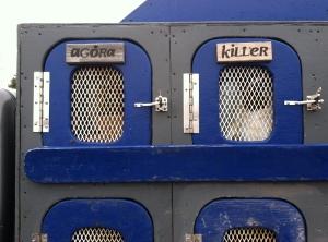 Agora and Killer